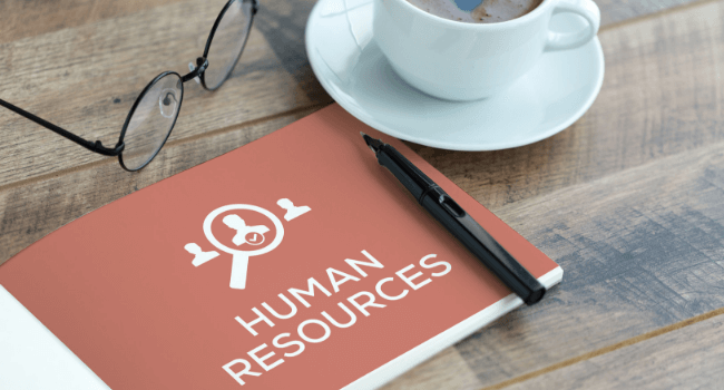 Skills to work in an HR or L&D role