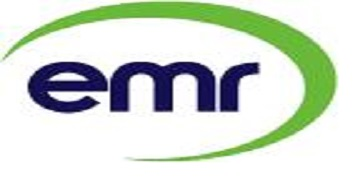 EMR Group logo