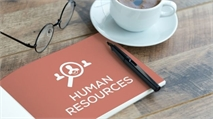 What skills are required to work in an HR or L&D role?